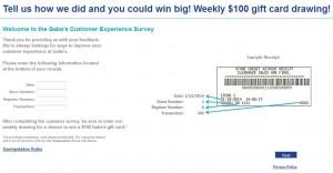 www.mygabes.com/survey - My Gabe's Customer Experience Survey